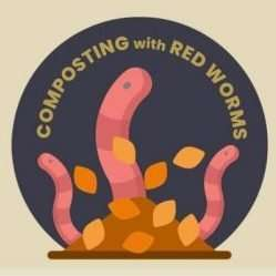 Welcome to Composting with Red Worms