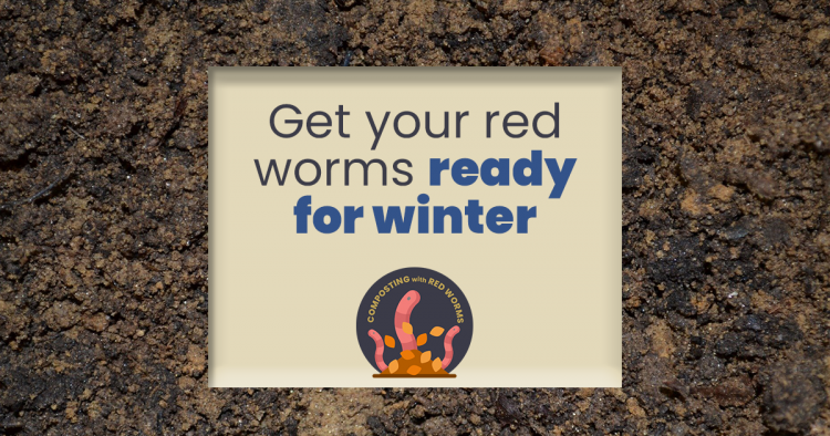Getting your red worms ready for winter