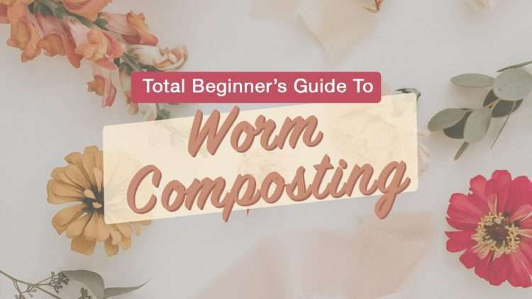 Beginner's guide to worm composting