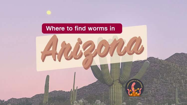 Find composting worms in Arizona