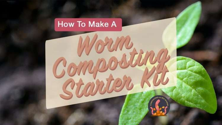 How to make a worm composting starter kit