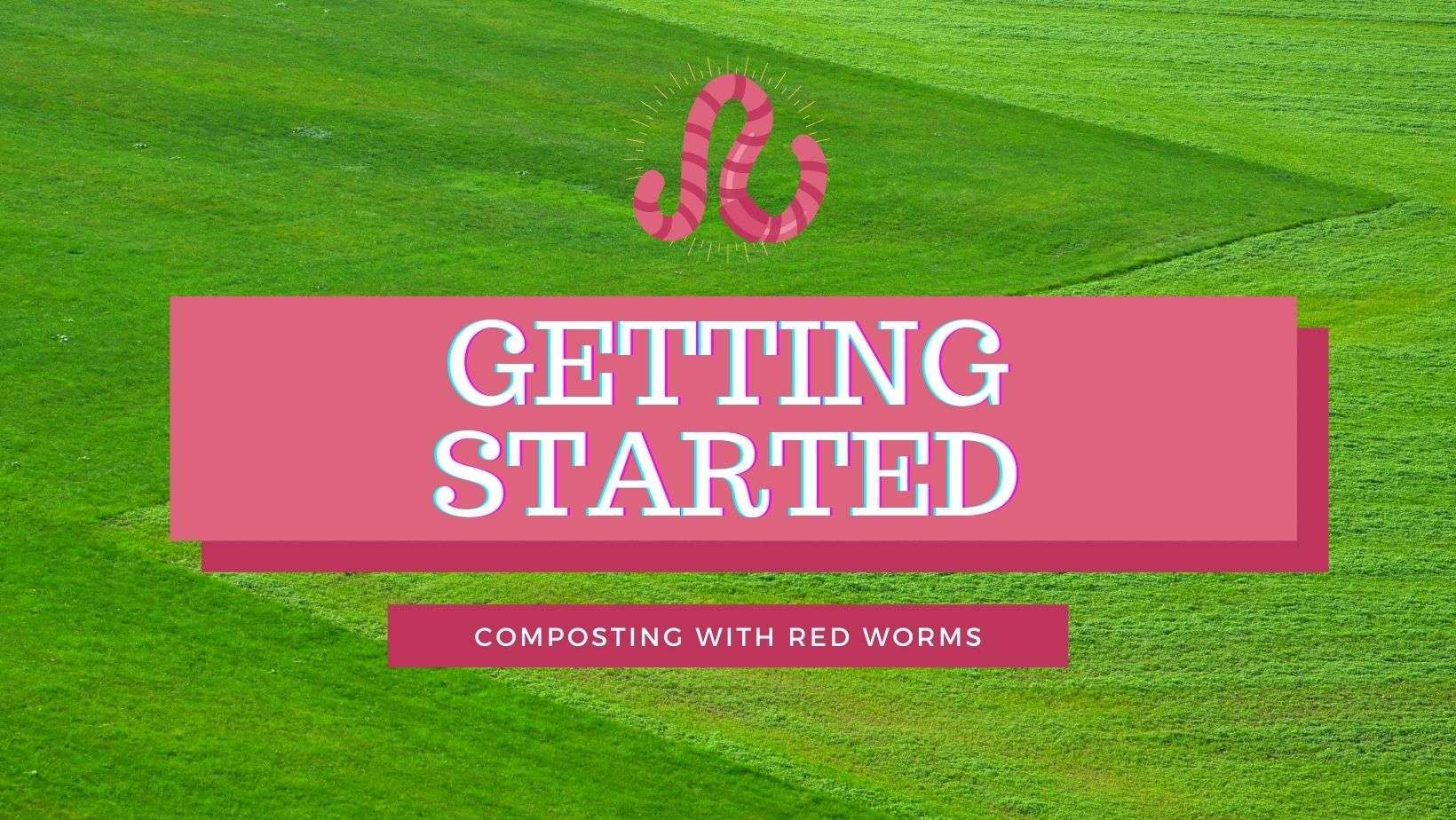 getting started with vermicomposting