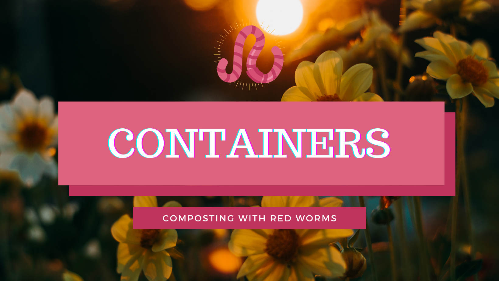 redworm composting bin containers
