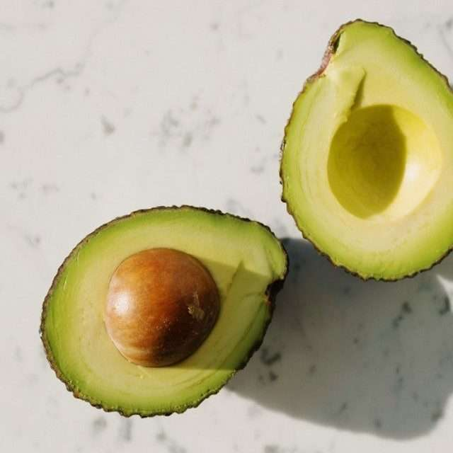 feeding composting worms love avocados