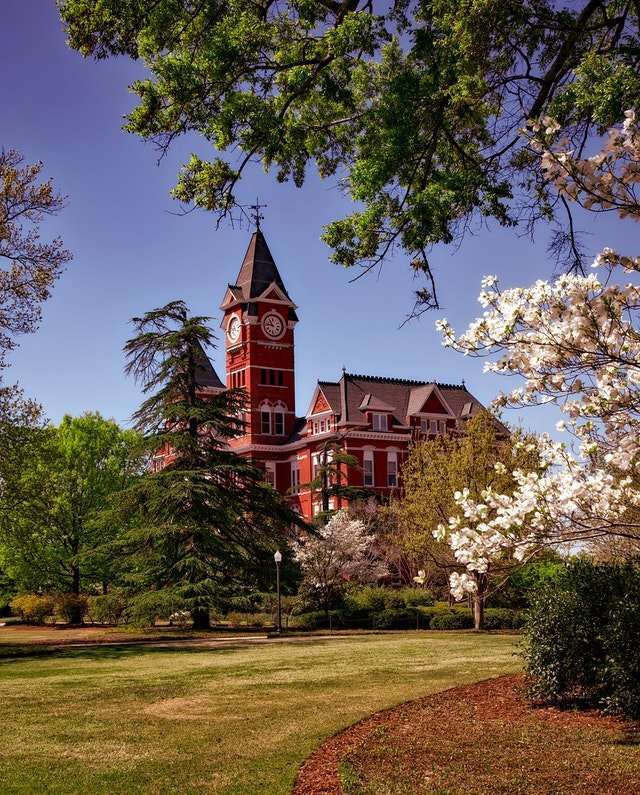 Alabama State courtyard and lawn and trees in bloom in the springtime