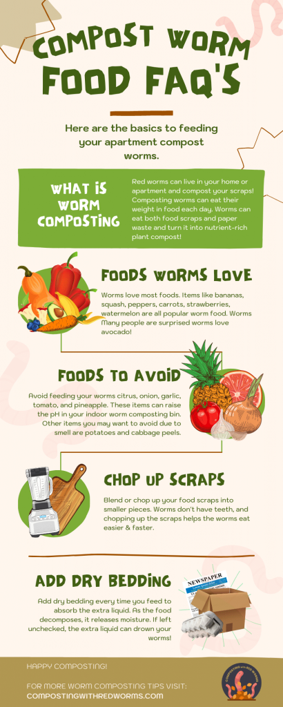 feeding compost worms